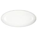 Pickard China Signature White China Body Platinum With No Monogram Fish Platter