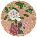 Beige Rhododendron collection image