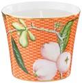 Raynaud Trésor Fleuri Orange Pomme d'eau Candle pot