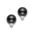 $1,590.00 Black South Sea Pearl and Diamond Earrings