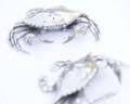 $99.00 Blue Crab Salt and Pepper