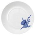 Dinner Plate - Sea Shell